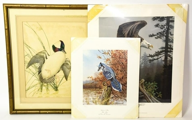 3 Bird Prints Owen Romme, Gary Gadamus, More