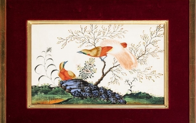Flowers and birds, 2 gouache on paper, China, Canton, 19th century, 27,5x19 cm and 28x19 cm (paintings)