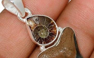 Prehistoric Shark Tooth & Ammonite Sterling Silver
