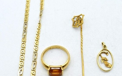 Ring, necklace, charm and pin in 18 ct yellow and...