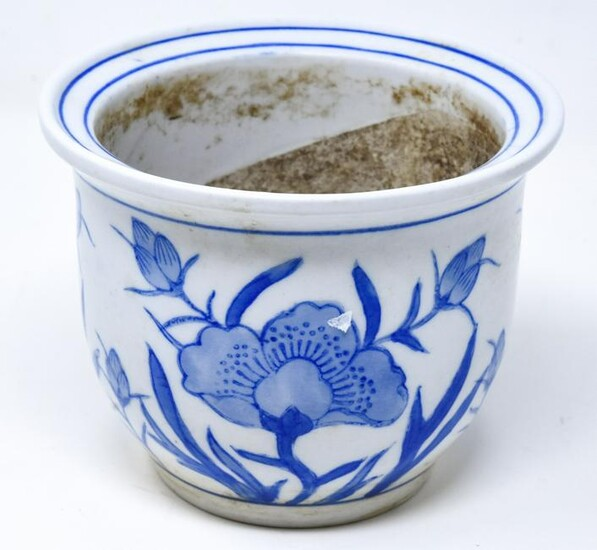 Chinese Blue & White Porcelain Pot