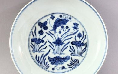 A CHINESE BLUE & WHITE PORCELAIN CARP DISH / PLATE