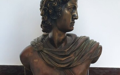 Bust, Apollo (1) - Bronze, Marble - Mid 20th century