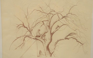 "Shelly Fink, lithograph, ""Apple Tree House"", pencil"