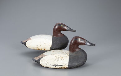Cast Iron Canvasback Wing Duck Pair