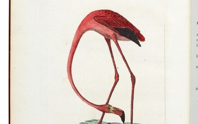 LATHAM | A general synopsis of birds, 1781-1785