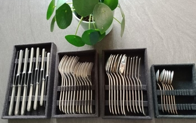 Christofle - Cutlery (42) - Silver plated