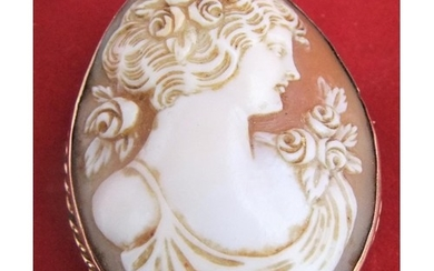 Late Victorian finely carved cameo brooch of head of lady