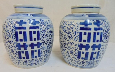 Pair Chinese blue & white ginger jars, porcelain double