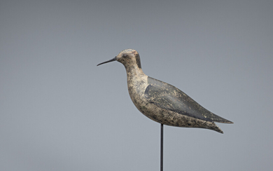 Golden Plover Decoy, Capt. William J. Wyre