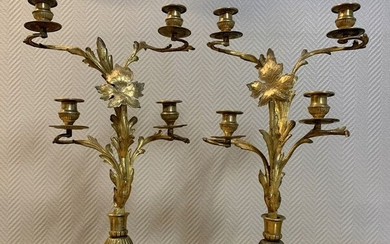 Large pair of sconces in gilded bronze mounted on a circular terrace - Bronze - Mid 19th century