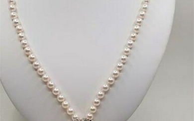 Top grade 7x8mm Akoya Pearls - Double strand Necklace