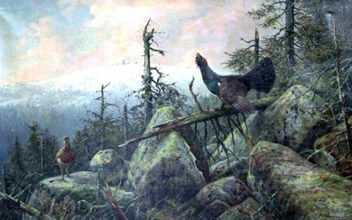 Carl ZIMMERMANN (1863 - 1930). Capercaillie and