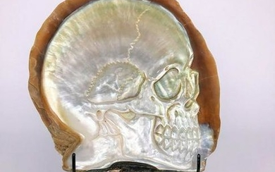 Mother of Pearl Shell with Human Skull Carving