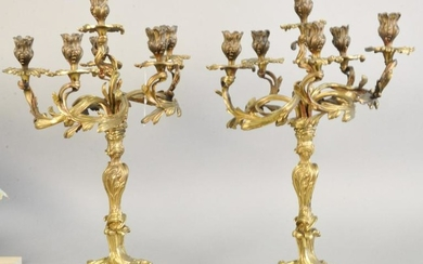 Pair of French bronze candelabras, six light, 19th