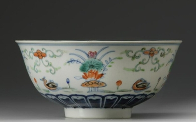 A CHINESE DOUCAI 'MANDARIN DUCKS' BOWL, LATE QING