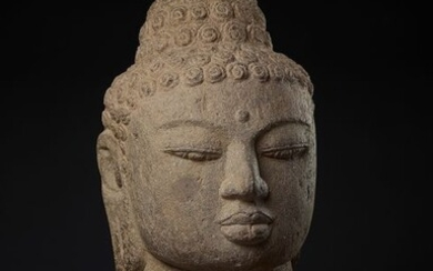 Head - andesite - A large Museum quality andesite head of Buddha - Indonesia - end of 9th - early 10th century