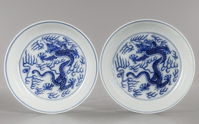 A PAIR OF BLUE AND WHITE 'DRAGON' DISHES, GUANGXU SIX