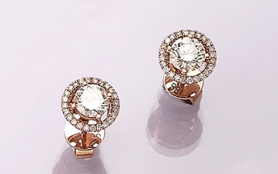 Pair of 14 kt gold earrings with...