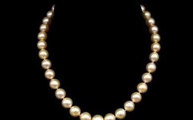 South sea golden pearl necklace with a yellow gold and diamo...