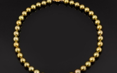 Necklace of round to semicircular Tahitian pearls, tinted pistachio color in a light fall from 8.99 to 11.28 mm. Very nice luster! 18k (750 thousandths) yellow gold clasp.