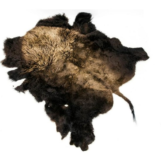 Winter fur of a male, Ame