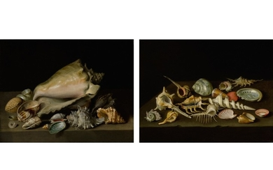 NIKOLAUS CHRISTOPHER MATTHES   STILL LIFES OF EXOTIC SHELLS ON A MARBLE LEDGE
