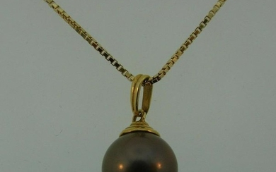 CHIC 14k Yellow Gold & Pearl Necklace