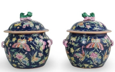 Pair of Chinese Blue Famille Rose Porcelain Urns