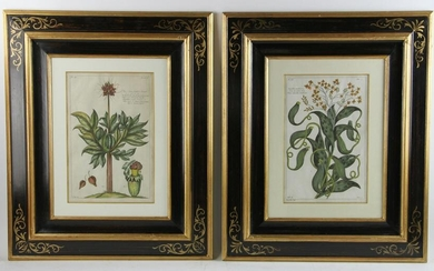 Set of Hand Colored And Engraved Prints, Dupin Circa