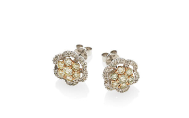 A pair of coloured diamond and diamond cluster ear studs