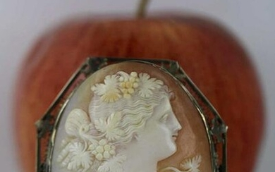 19TH C. FINE SILVER FILIGREE MOUNTED CAMEO PIN