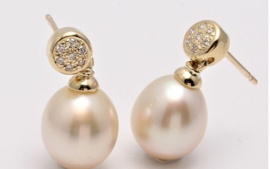 No reserve price - 14 kt. Yellow Gold- 10x11mm Champagne Golden South Sea Pearls - Earrings - 0.11 ct