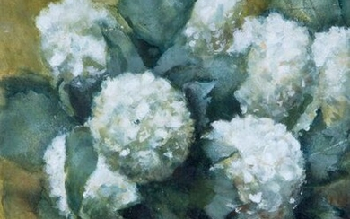 Corry Butcher (1893-1927), Chrysanthemum, watercolour, unsigned, provenance: Kunsthandel...