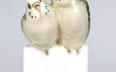 Pair of budgies, Rosentha