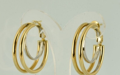 18 kt. Gold - Earrings