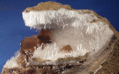 Natrolite and Calcite - Crystals in petrified wood - 10×8×4 cm - 238 g