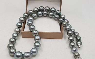 No reserve price - 14 kt. White Gold - 8.2x11mm Silvery Green Tahitian Pearls - Necklace