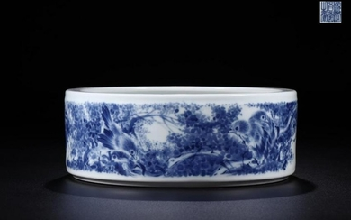A BLUE AND WHITE BRUSH WASHER
