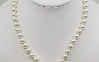 925 Silver - Top grade 8x9mm Akoya Pearls - Necklace