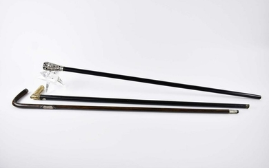 THREE SILVER, SILVERED METAL AND VARIED WOOD CANES