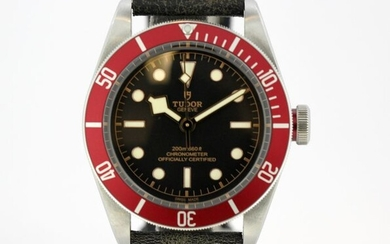 Tudor - Black Bay Heritage - 79230R - Men - 2011-present