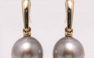 14 kt. Yellow Gold - 9x10mm Tahitian Pearl Drops