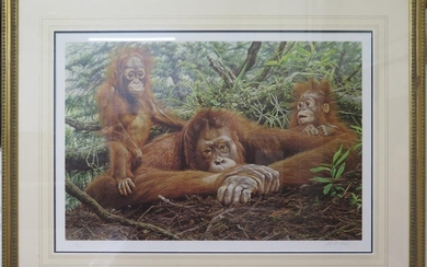 Alan M Hunt 'But This is Our House' - Orangutans Signed limi...