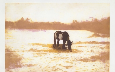 Peter Doig, Pinto, from 100 Years Ago
