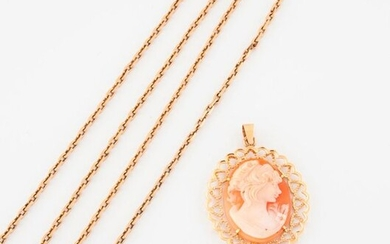 Yellow gold (750) chain with a curb chain link holding an openworked yellow gold (750) frame pendant adorned with an oval cameo on a shell depicting a young woman's profile.