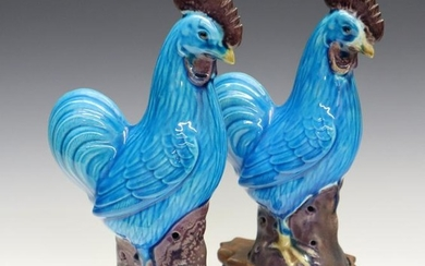 Pr. Chinese Roosters