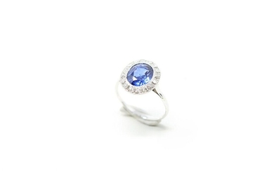 Ring in 18K (750) white gold and platinum set with an oval sapphire in a ring of brilliants.