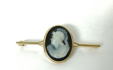 Brooch with stone cameo of a classical head, in 9ct gold.