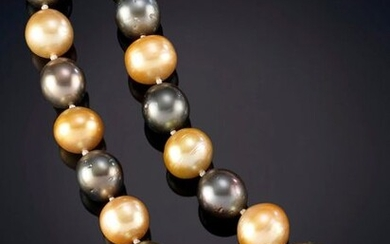 EXQUISITE NECKLACE OF 54 AUSTRALIAN GOLDEN AND TAHITIAN GOLDEN PEARLS OF INTENSE AND HOMOGENEOUS COLOR. IN LIGHTWEIGHT GRADED OF 13 -15 MM. Starting price: 2.500,00 Euros. (415.965 Ptas.)